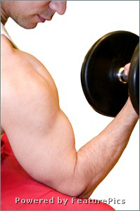 Which Is Better For Building Lean Muscle: Machines Or Free Weights?