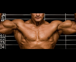 The Benefits of Glutamine - Muscle Building